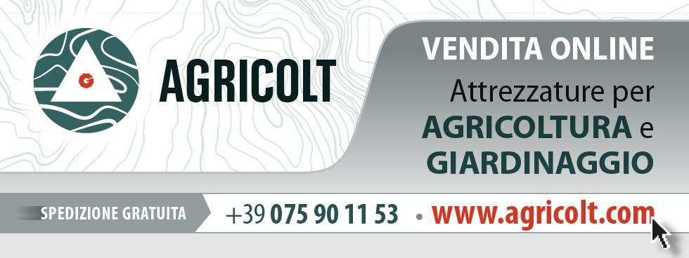 AGRICOLT MACCHINE AGRICOLE PERUGIA