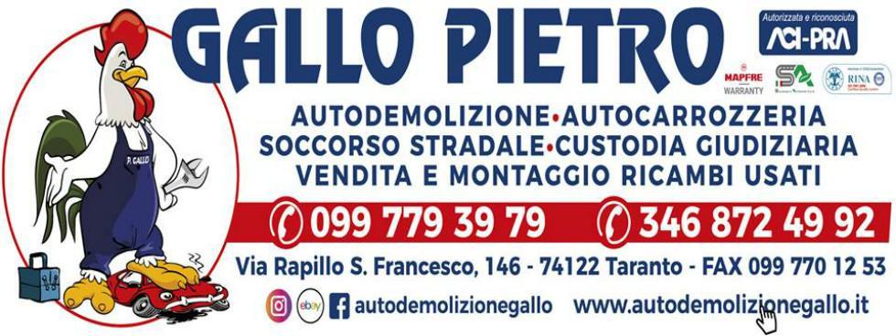 AUTODEMOLIZIONE GALLO PIETRO