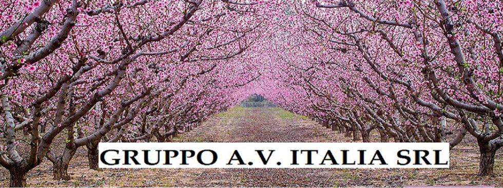 GruppoA.V.ITALIA - PASSIONEMOTO & Co