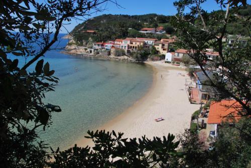 Agenzia Immobiliare Oasis - Campo nell'Elba - L'Agenzia Immobiliare Oasis ha sede a M - Subito