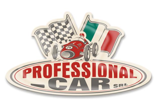 PROFESSIONAL CAR SRL - Montelupo Fiorentino - Dall'esperienza trentennale di personale - Subito Impresa+