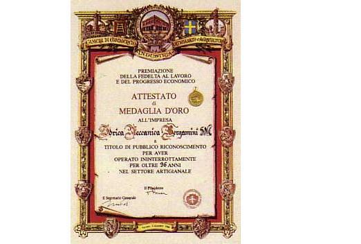 IDRICA MECCANICA BERGAMINI S.N.C. - Pastrengo - L'IDRICA MECCANICA BERGAMINI s.n.c. è l - Subito Impresa+