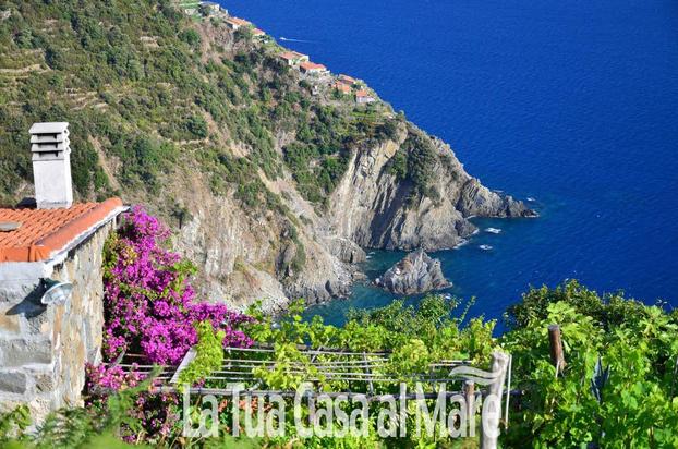 La tua Casa al Mare - Monterosso al Mare - Questa Sito nasce dall' esigenza di molt - Subito Impresa+