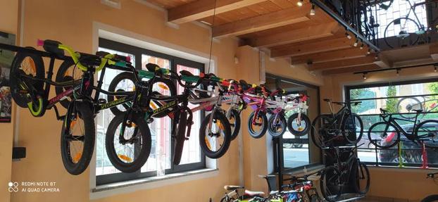 Bi-Bike - Vigliano Biellese - Rivenditore ufficiale Specialized. Riven - Subito Impresa+