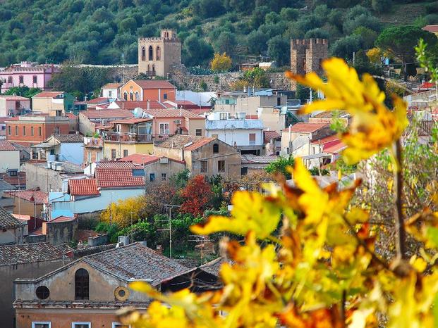 4 Mori Immobiliare - Iglesias - 4 Mori Immobiliare, una giovane e dinami - Subito Impresa+