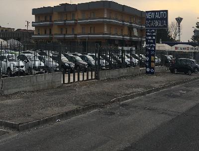 NEW AUTO SGARIGLIA - Giugliano in Campania - NEW AUTO SGARIGLIA                    1) - Subito Impresa+