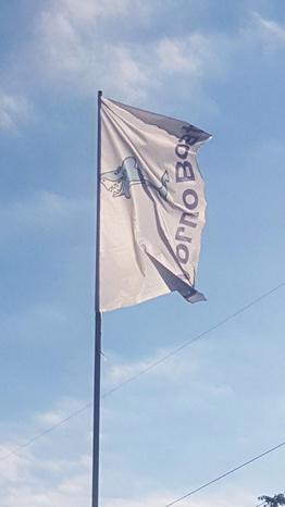 Livorno Boats - Livorno - Agenzia mediazione compravendita  natant - Subito Impresa+
