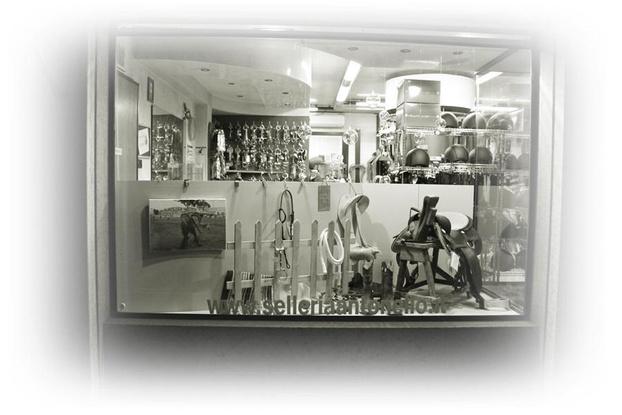SELLERIA ANTONELLO - Cittadella - La Selleria Antonello è un negozio onli - Subito Impresa+