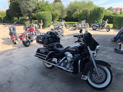Stefanhead - Rimini - Cerchi una Harley Davidson di  carattere - Subito