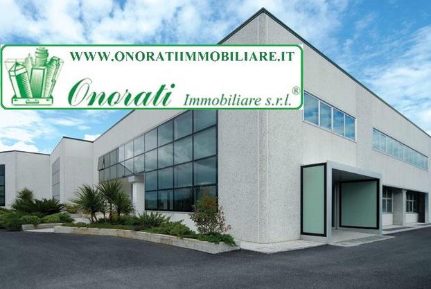 ONORATI IMMOBILIARE S.R.L. - Guidonia Montecelio - Onorati Immobiliare Srl rappresentata da - Subito Impresa+