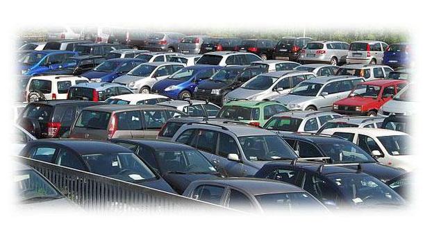 AUTOmarket di Anton Mutschlechner - Perca - La ditta AUTOmarket si occupa già da 30 - Subito Impresa+