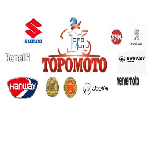 TOPOMOTO - Napoli - Passione, professionalità attenzione so - Subito Impresa+