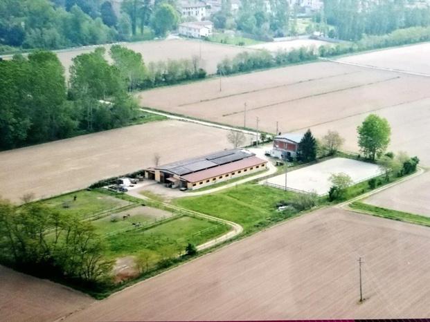 Azienda agricola NERO DI MANTO - Cassinetta di Lugagnano - VITO e DANIELA  condividendo una forte p - Subito