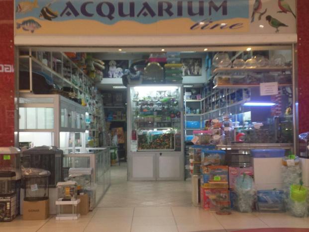 Aquarium line - Afragola - Acquariologia cinofilia ornitologica e t - Subito Impresa+