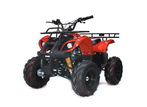 Cuscar mini moto, cross e Quad - Palermo - Fondata nel 2001, Cuscar è un  esperto - Subito Impresa+