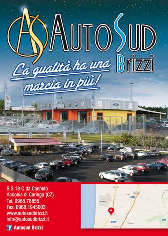 AUTOSUD BRIZZI - Curinga - Azienda leader nel settore automobilisti - Subito