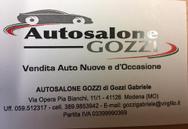 GOZZI GABRIELE logo
