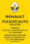 PULICATI AUTO SRL logo