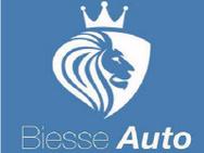 Biesse Auto Srl logo
