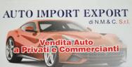 Auto import Export s.r.l. logo