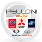 PELLONI AUTO S.p.A. logo