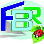 FERRAMENTA BRIKO BONOMI logo
