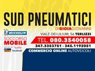 SUD PNEUMATICI _ COMMERCIO AUTOVEICOLI logo