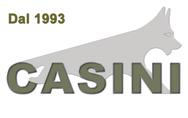 Casini Samuele logo