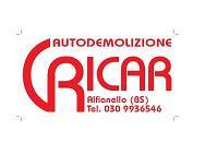RICAR SRL logo