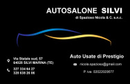 AUTOSALONE SILVI logo