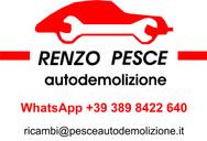 AUTODEMOLIZIONE PESCE RENZO logo