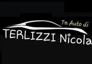 TN AUTO DI TERLIZZI NICOLA logo