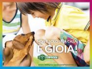 TEMPOCASA CASAMASSIMA logo