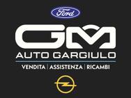 GM AUTO GARGIULO s.r.l. logo