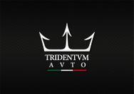 Tridentum Auto SRL
