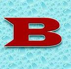 BERNARDI S.r.l.s. logo