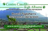 Centro Cinofilo Degli Alburni logo