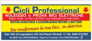 CICLI PROFESSIONAL logo
