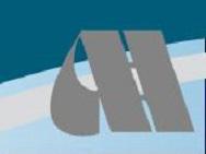 Autoveicoli Industriali F.lli Azzola logo