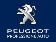 PEUGEOT PROFESSIONE AUTO S.r.l. logo
