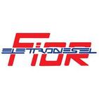 ELETTRODIESEL DI F.LLI FIOR GINO  FEDERICO S.N.C. logo