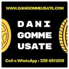 DaniGommeUsate logo