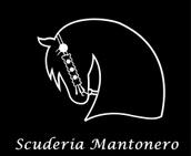 Azienda agricola NERO DI MANTO logo