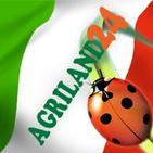 Agriland24 Srls logo
