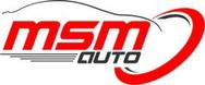 MSM Auto s.r.l. logo