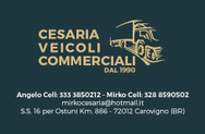 Cesaria Veicoli Commerciali