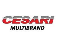 Cesari Multibrand logo