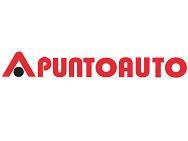 PUNTO AUTO Srl logo