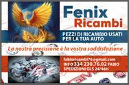 FenixRicambi 334 2307602 logo
