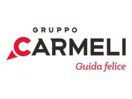 Gruppo Carmeli S.p.A